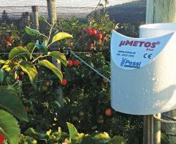 Производство яблок с использованием системы поддержки принятия решений IMETOS