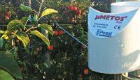 Производство яблок IMETOS